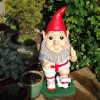 Gnorman The Gnome